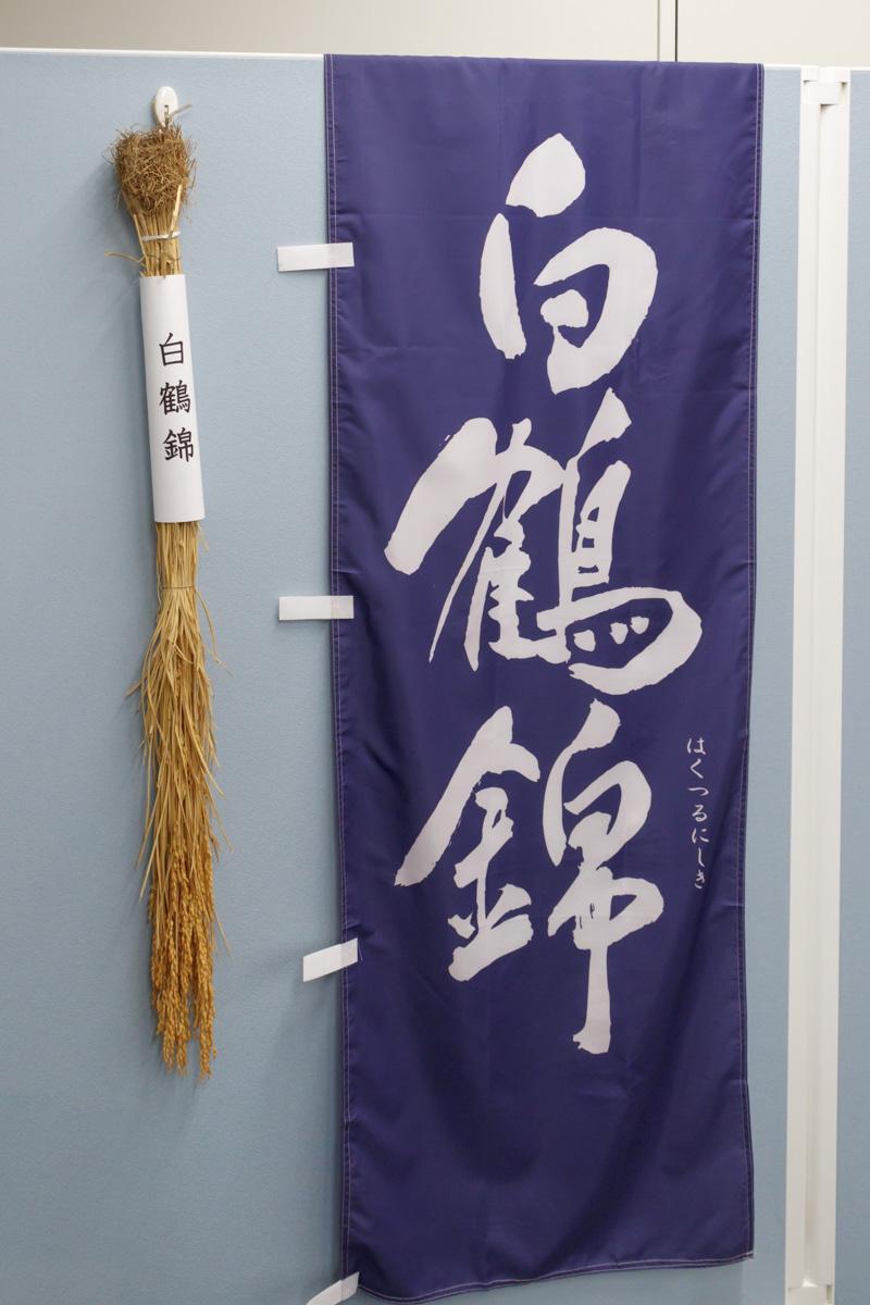 山田錦に比べ、背が低く倒れにくい