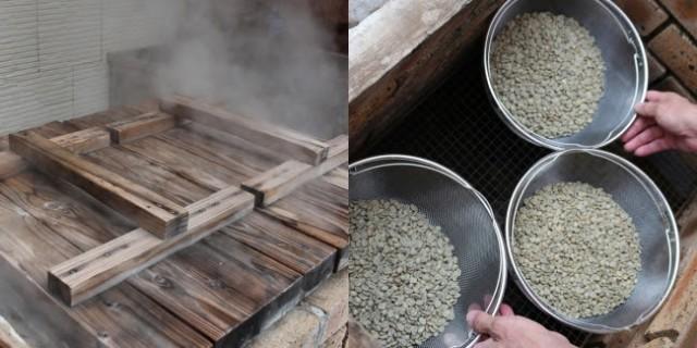 スペシャルティコーヒー豆を特許成分「温泉藻類RG92」の源泉で地獄蒸し