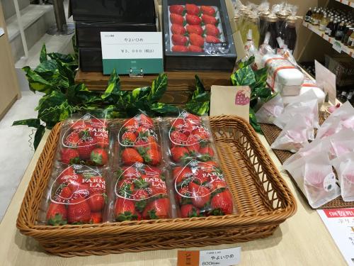 Yayoi Ushi used for Bisee